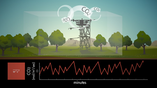 Eddy Co-variance: Measuring an Ecosystem's Breath (CEFF 4 Kids Event)