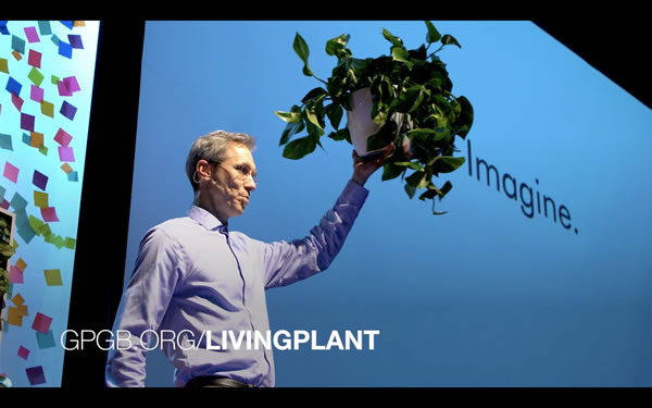 The Living Plant
