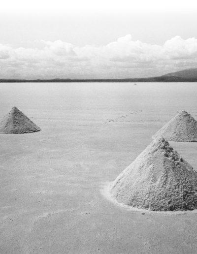 SALT - Jeffrey Hersch